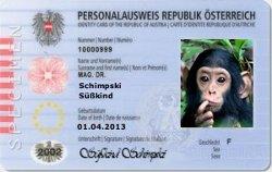 Persönlichkeitsrecht für Tiere