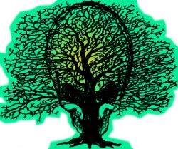 Zivilisationsbaum