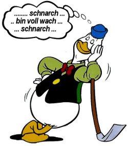 schnarch