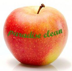 paradise- clean